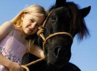 Uudistuva hevostalous tuo elämyksiä asiakkaille