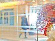 Havaintoja osaamisen rakentumisesta ja tulevaisuuden osaamistarpeista terveysalalla