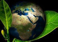 Biotalous 4.0 ja Carbon 4.0 – megatrendeistä ammentavaa tutkimusta