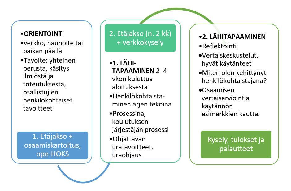 Kuvio 1. Henkilökohtaistamisen ja ohjauksen koulutusten rakenne ja eteneminen (HAMK, 2019).