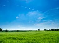Avoimen datan ratkaisuja biotalouteen